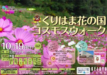 2013年度【第4回】くりはま花の国コスモスウォーク