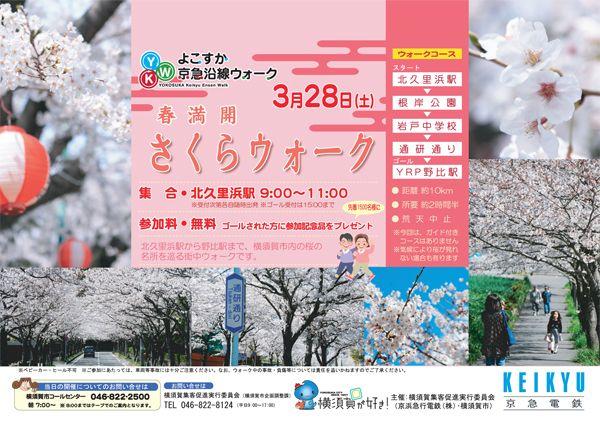 2008年度 【第6回】根岸~YRPの桜をめぐる「春満開 さくらウォーク」